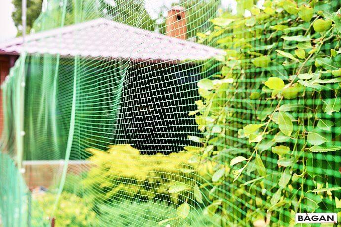 Siatka do ogródka działkowego na uprwę roślin