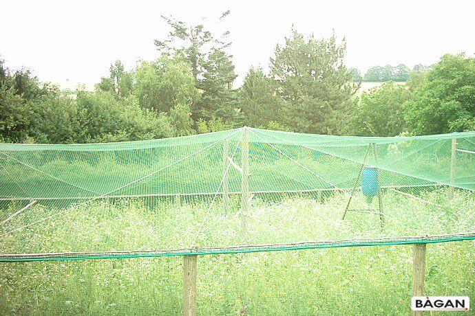 Siatka do uprwy na ogrodzie warzyw