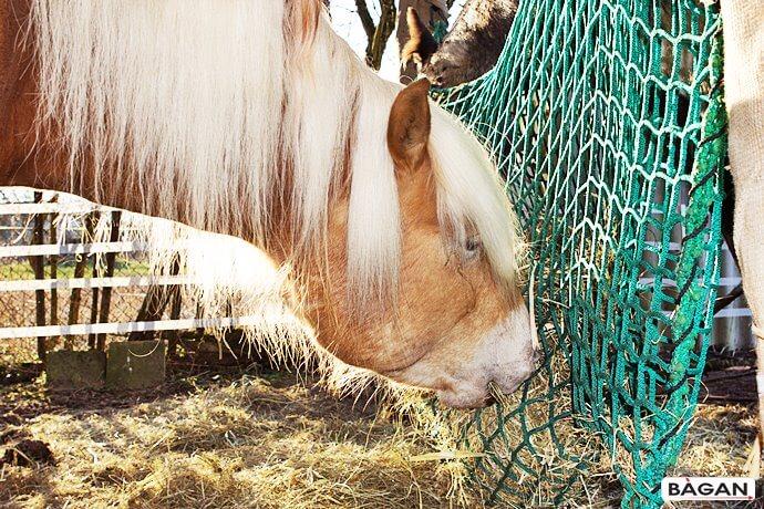 Siatki dla zwierząt hodowlanych